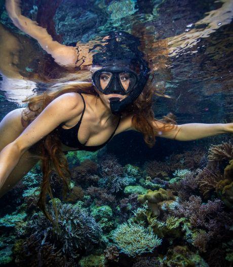 Heusdense Sunniva (32) vluchtte voor corona om koraal te redden: 'Op Curaçao vond ik een nieuw doel in mijn leven'