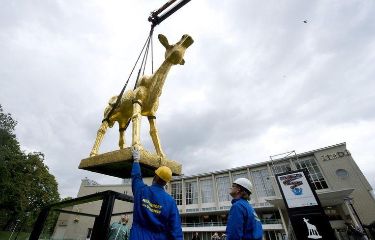 Standbeeld van een Gouden Kalf voor de Stadsschouwburg in Utrecht. Beeld anp