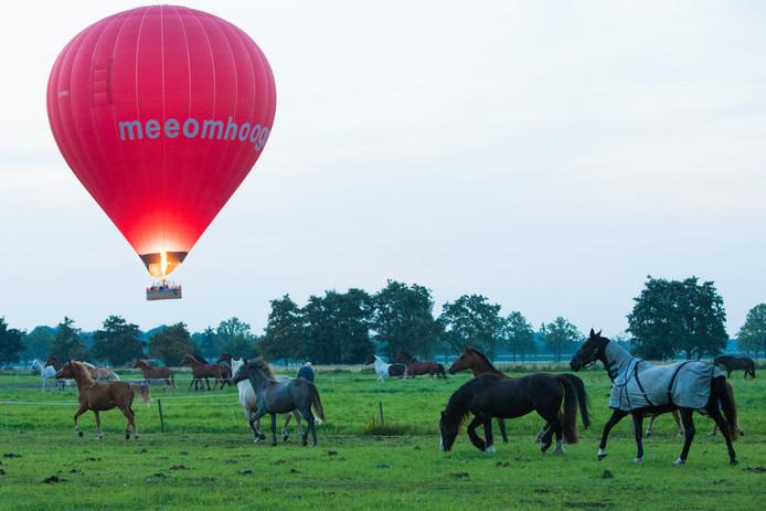 Een luchtballon en paarden op de foto zijn ter illustratie. Dit betreft dus niet de luchtballon in kwestie.