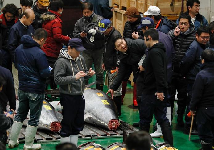 Handelaars verzamelen zich om de enorme tonijn van 278 kilo op de beroemde vismarkt in Tokio in Japan.
