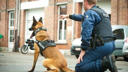 Drugshonden in gevangenis vinden vaker drugs, maar kleinere hoeveelheden