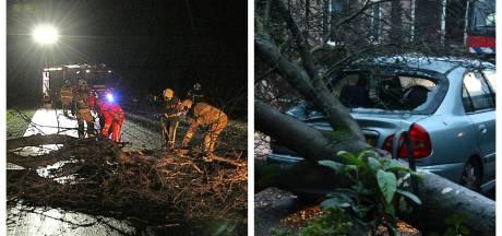 Overlast storm Bella blijft beperkt in Twente: 'Vooral omgewaaide bomen opgeruimd'