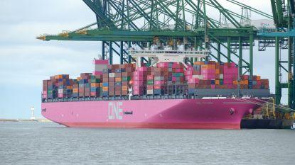 Roze schip voor anker in Antwerpse haven