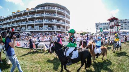 Zo schattig! Lore wint eerste ponyrace ooit  op historische Waregem Koerse