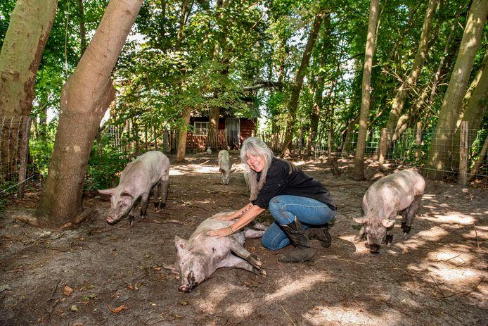 Margarit Gerrits knuffelt een van haar varkens, die een heerlijk leventje hebben op De Nobele Hoeve in Strijbeek.