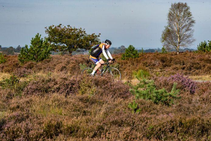 NatuurAlert Nederland wil geen mountainbikers meer in het Nationaal Park De Sallandse Heuvelrug