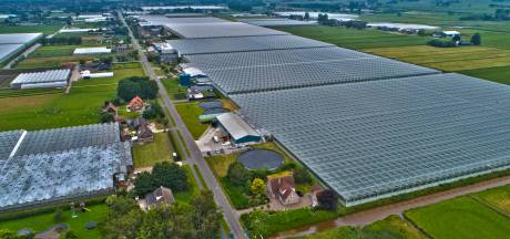 Bewoners tuinbouwgebied in IJsselmuiden maken zich zorgen over huisvesting van honderden Polen