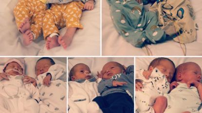 Zo schattig! In een week zes tweelingen geboren in AZ Groeninge