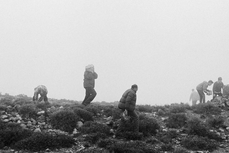 Kolonisten dragen de eerste stenen aan voor een nieuw te bouwen illegale nederzetting op de Westelijke Jordaanoever, Neve Daniel, 1993. Beeld Ad van Denderen