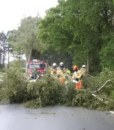 Schade door herfststorm valt mee: 'We hebben hier nog mazzel gehad'