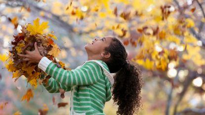 Herfstvakantie! 9 leuke activiteiten die je kan doen met je kroost