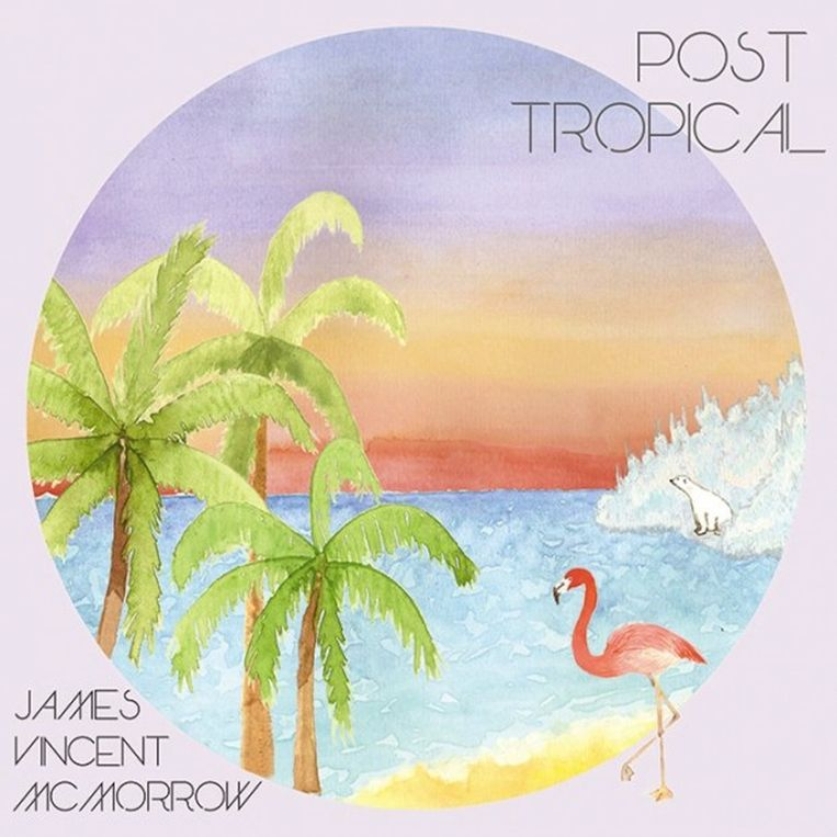 null Beeld Albumhoes Post Tropical