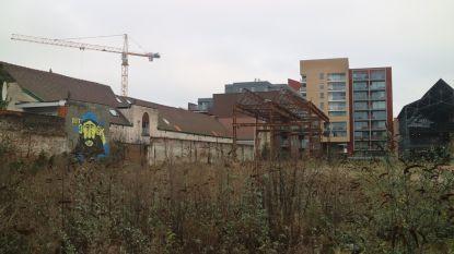 Park achter Dok Noord geraakt maar niet aangelegd