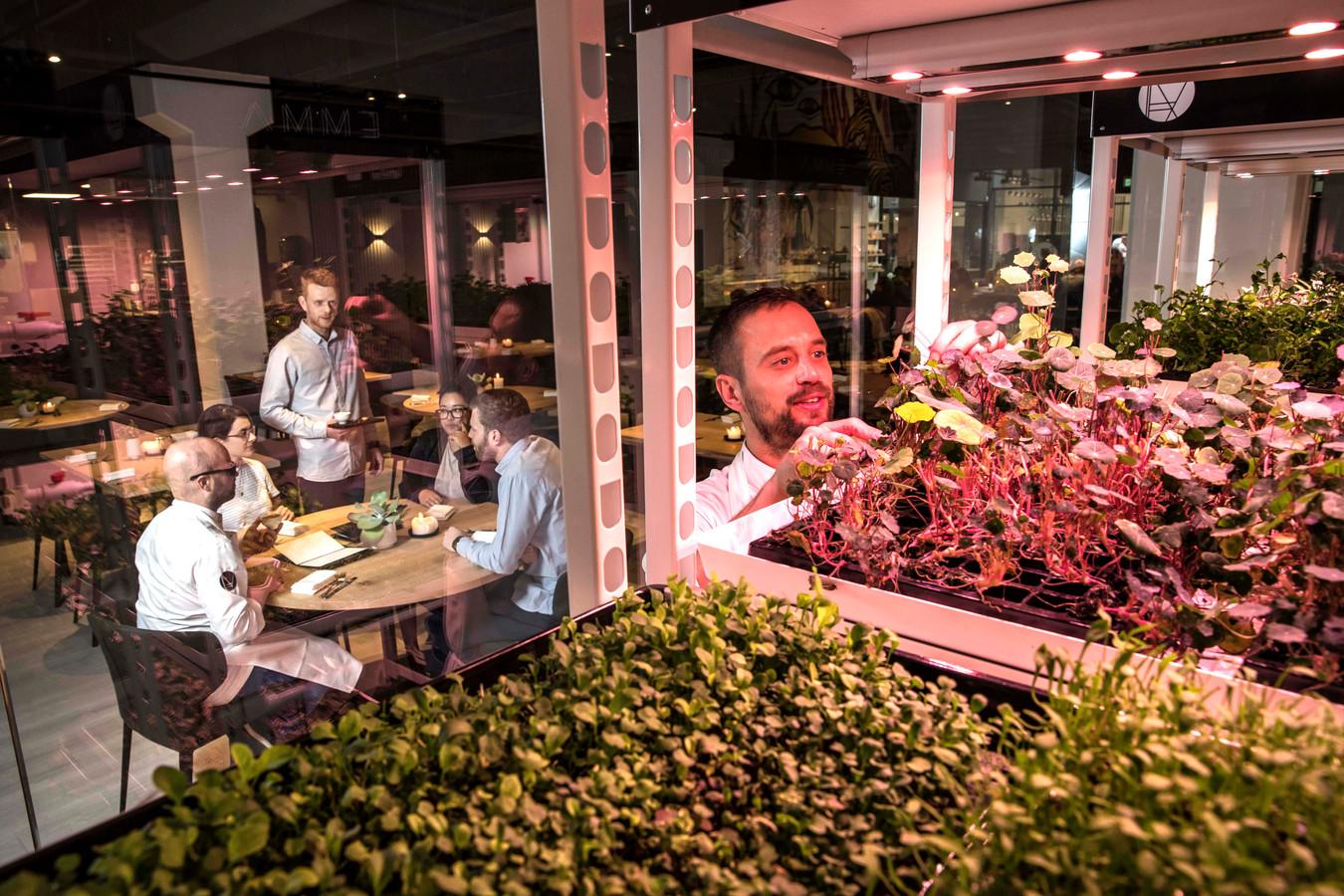Restaurant Emma te Eindhoven met verrijdbare trolleys waarin groente en kruiden worden geteeld.