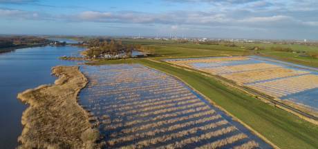 Ruimte voor Rivier IJsseldelta en project Rijn en IJssel genomineerd