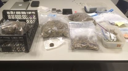 Nieuwe drugshond bewijst zijn nut en helpt politiezone aan twee grote drugsvangsten