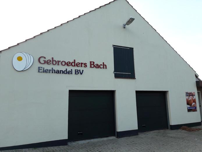 Afnemer betaalt niet: eierhandel failliet | Nijmegen e.o ...