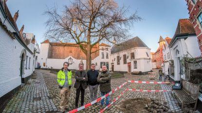 """Begijnhof krijgt nieuwe en beter toegankelijke bestrating: """"Monumentale esdoorn blijft"""""""