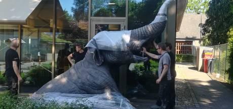 Mastodont vindt plek in museum Asten