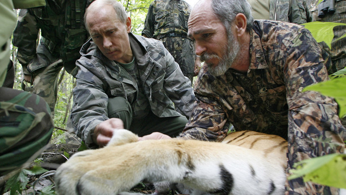Poetin bij de 'wilde' tijgerin die hij heeft neergeschoten.
