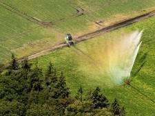Waterschap verbiedt onttrekken van water uit sloten en beken, grote zorgen over droogte
