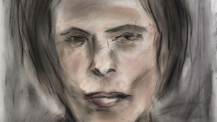 About Face. Sylvia Renard, 2012, pastel op papier 61 x 45,7 cm Beeld The Bob and Jenny Ramsey Collection