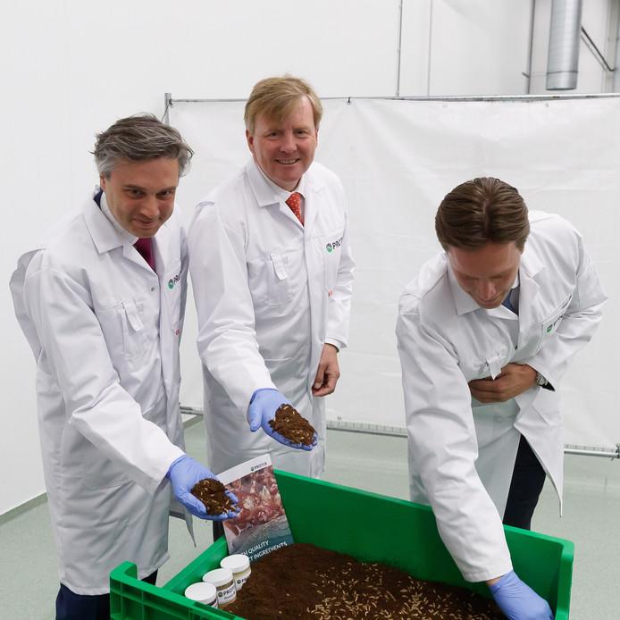 Koning Willem Alexander bracht vandaag een bezoek aan insectenkwekerij Protix. Tour door de fabriek, en woelen door de larven in het bijzijn van oprichters Kees Aarts en Tarique Arsiwalla