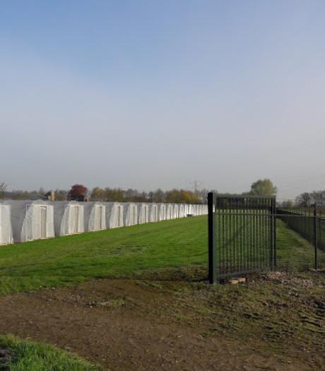 Spinazie-onderzoek blijft welkom in Wageningen