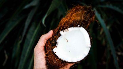 """Voedingsdeskundige weerlegt uitspraak: """"Kokosolie is géén vergif"""""""