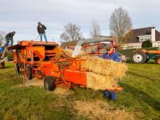Tractormennekes uit Zeelst hebben een liefde voor ouderwets dorsen