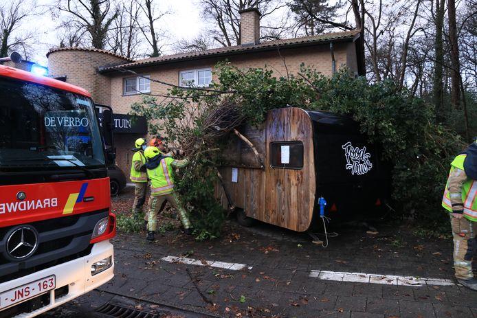 De brandweer kwam ter plaatse om het gevaarte te verwijderen.