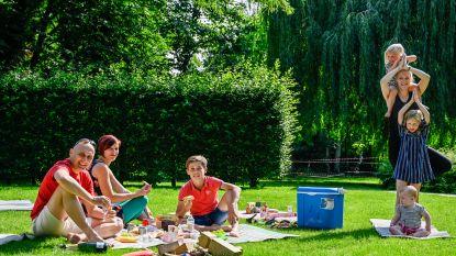 Zele Picknickt telt af naar achtste editie