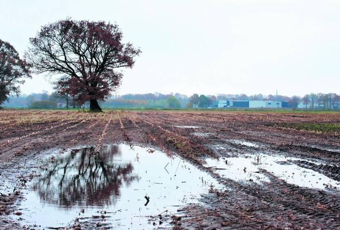 Gemeente Almelo staat voorlopig nog geen woningbouw in het gebied Waterrijk toe.