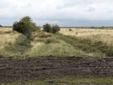 Staatsbosbeheer knapt de Kapelse Moer op