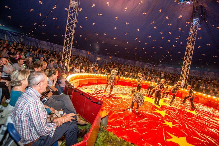 De leerlingen aan het werk tijdens de show van circus Picolini