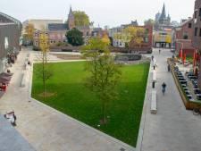 Pleinwacht Wilminkplein in Enschede wordt wegbezuinigd