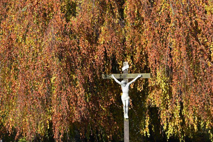 Herfstkleuren op de Rooms Katholieke begraafplaats in Buren