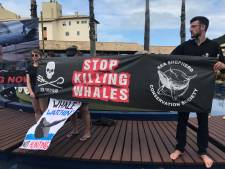 Japan wil einde aan verbod op commerciële walvisjacht