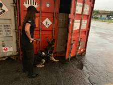 Cocaïne bestemd voor Rotterdam onderschept in Braziliaanse haven