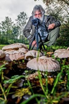 Het is herfst en dus gaat Rob (68) elke dag op pad om paddenstoelen te fotograferen
