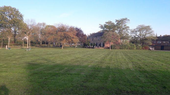 Het grasveld aan de Wethouder Trompersstraat.