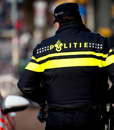 Scheldende stappers krijgen het  aan de stok met Veluwse wijkagenten