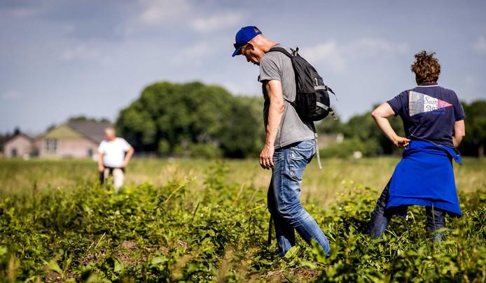 Deelnemers aan de zoektocht naar de vermiste Savannah Dekker liepen langs de N199.