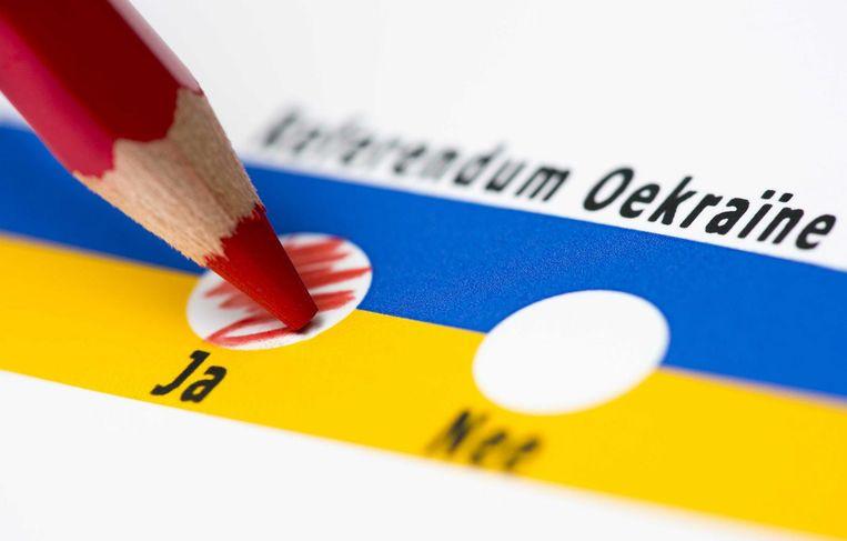 Een animatie van het referendum. Beeld Anp