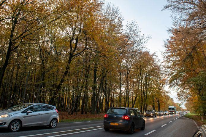 De N35 bij Raalte stroomde buiten coronatijd tijdens de spits altijd vol, verkeer vanuit Zwolle kan bij verkeerslichten achteraan sluiten.