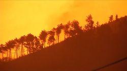 Indrukwekkende nachtbeelden van bosbranden in Toscane