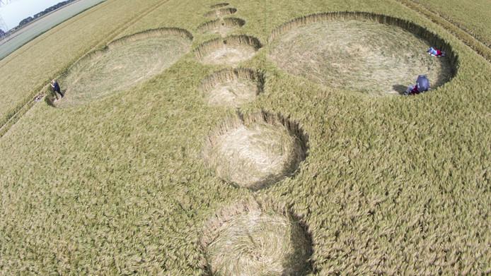 De cirkelformatie die in een graanveld in Standdaarbuiten te zien is.