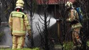 Haag in lichterlaaie door onkruidbrander