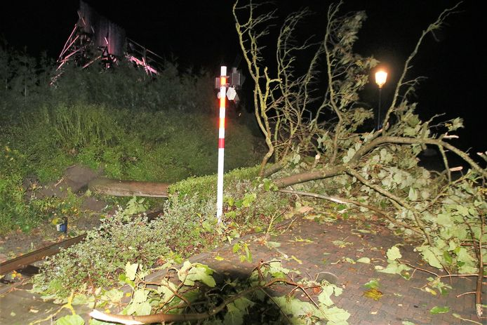 De treinsporen in het pretpark even belemmerd door een omvergewaaide boom