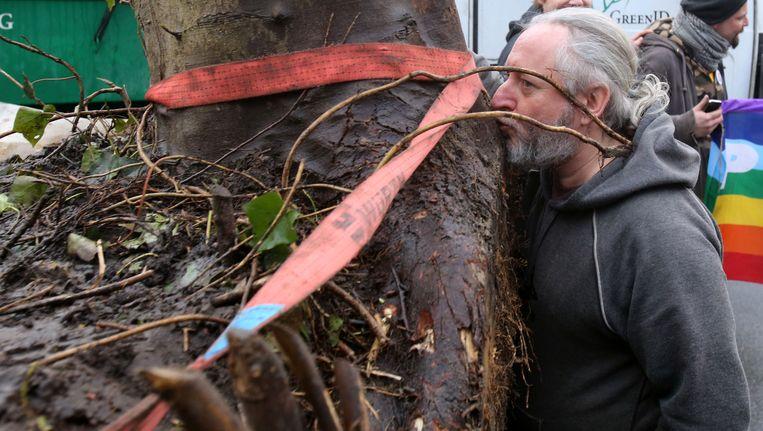 Alain De Coussemaeker bij een verhuis van enkele bomen in februari 2015.